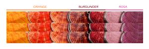 Organic Island Shell Lip Balm Oriental Fan Rosa